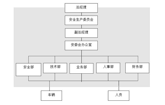 某某出租汽车有限公司安全生产组织机构图